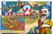 Paradise Beach 2 download