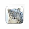 Apple Mac OS X Snow Leopard for Mac download