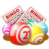 Bingo Caller Pro download