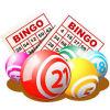Bingo Caller Pro download