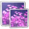 John's Image Converter download