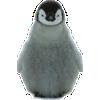 Animal Desktop download
