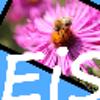 EasyImageSizer download