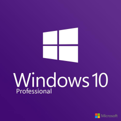 Windows 10 Professional download